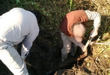 Provisión de Agua Potable en Cañada de Alzogaray