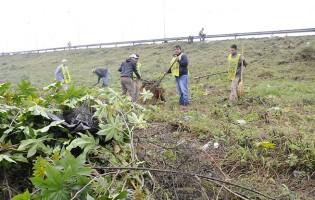 Saneamiento Ambiental trabaja en el acondicionamiento de la zona del Mercofrut