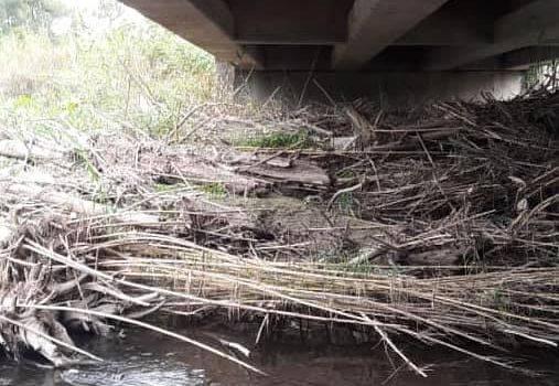 DPV | Tareas de limpieza en canales de la provincia
